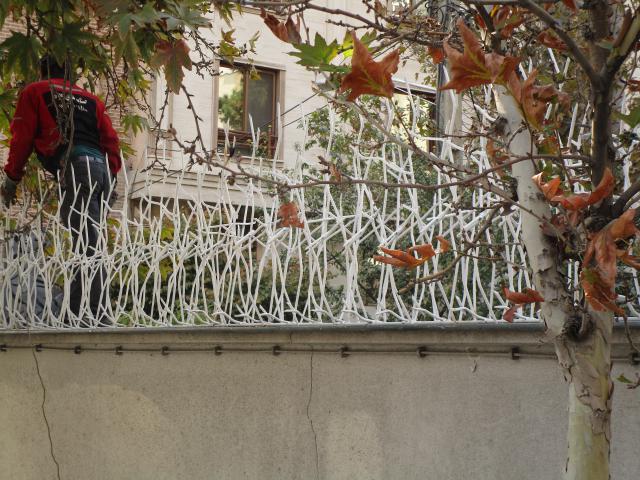 حفاظ شاخ گوزنی با نصب رایگان