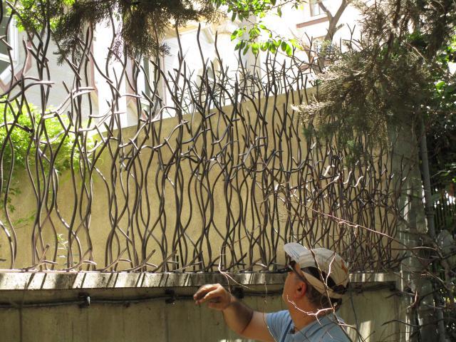 حفاظ شاخ گوزنی با ارتفاع بلند
