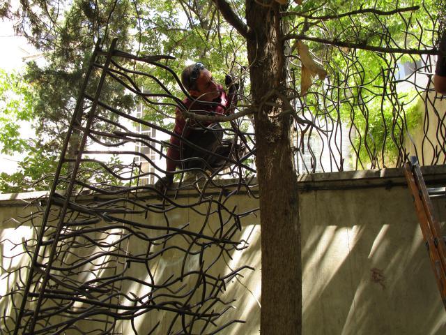 نصب شاخ گوزنی