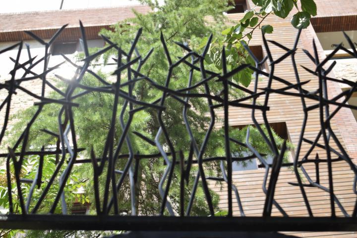 حفاظ شاخ گوزنی باغ