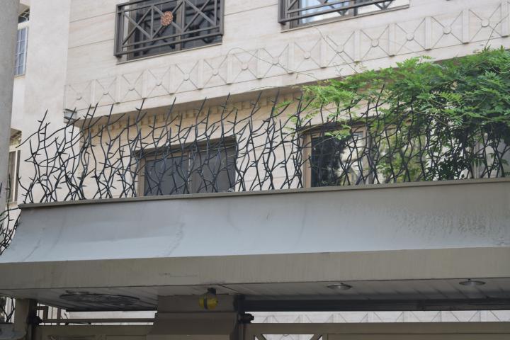 حفاظ شاخ گوزنی برروی دیوار